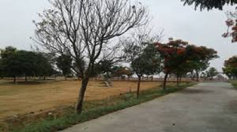 500000 SQ.YRD INDUSTRIAL PLOT | LAND FOR SALE | LEASE IN CHANGODAR AHMEDABAD – 7043395463