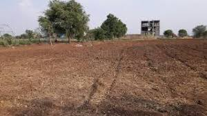 AGRICULTURE PLOT | LAND AGENT IN CHANGODAR , CHHATRAL AHMEDABAD – 7043395463